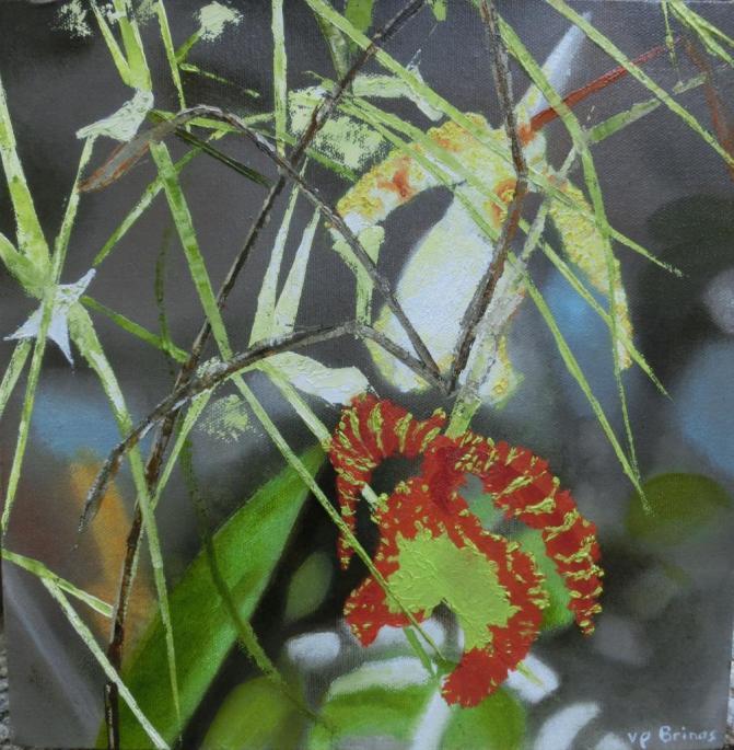 Orchidées sauvages hst 30×30cm